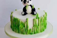 tort_panda