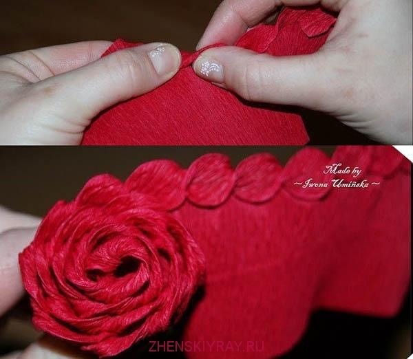 крученые розы из гофрированной бумаги уже покупала